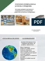1. Investigación y Tecnología desarrolladas por el ITP para el CHD