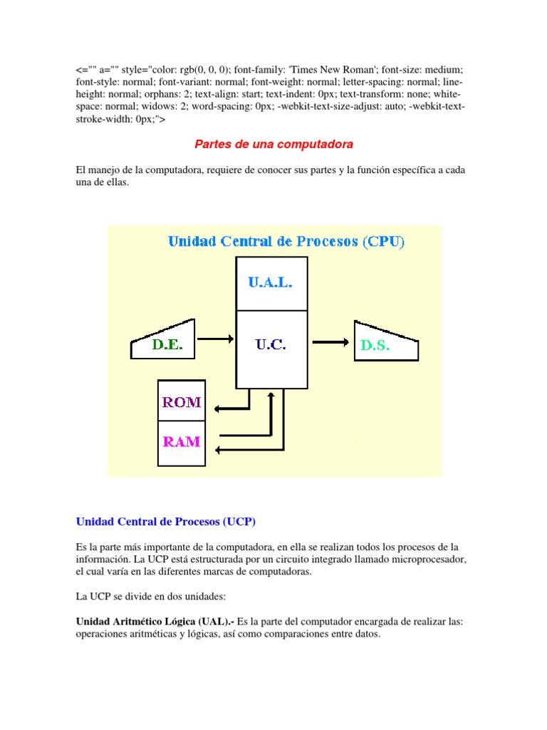 Circuito Y Sus Partes : Computador y sus partes