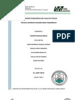 Resumen Del Seminario FISIOPATOLOGIA RENAL