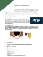 INFORME PRACTICA 8 - FERMENTACIÓN ALCOHÓLICA EN LEVADURAS