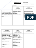 Care Plan Template 2