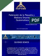presentacion-fepyme