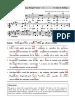 Salmo CF001