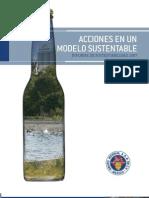 Informe Rs Gm 2007 Es