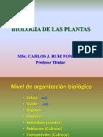 BIOLOGIA DE LAS PLANTAS FORRAJERAS.ppt