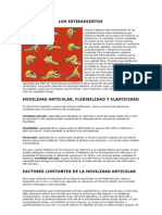 LOS ESTIRAMIENTOS.doc