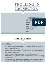 Controlling in Public Sector