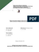 Informe Final Pasantia Maryuri PDVSA GPS - c