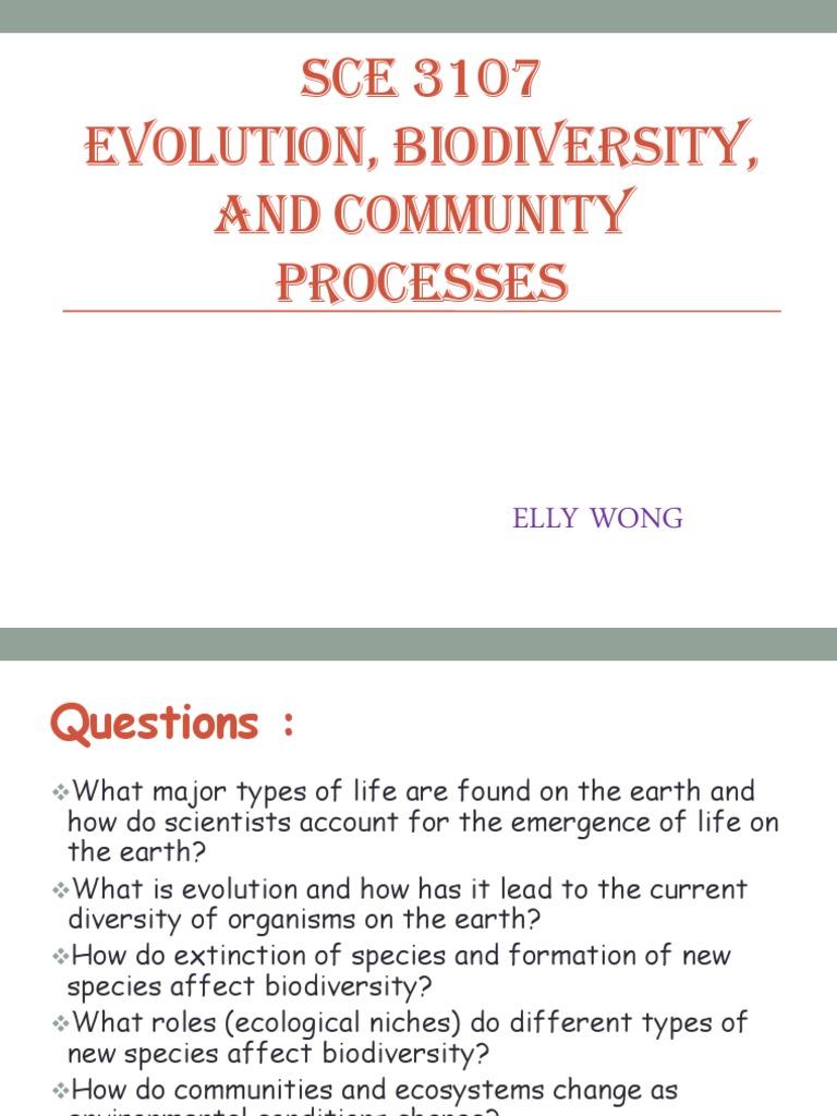sce 3107 Elly   Evolution (7 views)