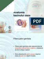 Curs 2 Notiuni de Anat1omie - Bazin Obstetrica