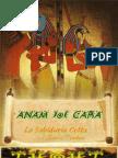 Anam Cara - El Alma Druida