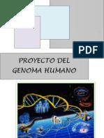 Trabajo del Genoma Humano Final