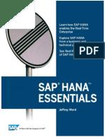 SAP HANA (1)