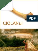 CIOLANUL