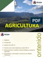 Nic 41 Actividad Agricola Ccpp