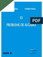 Probleme de Algebra Purdea- Pelea