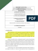 Igor - Formulário de Anteprojeto Estudos Fronteiriços