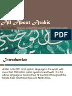 Romo Translations - Arabic Language Guide