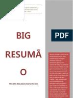 BIG RESUMÃO.docx