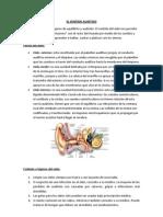 EL SENTIDO AUDITIVO.docx