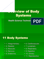Overview of Body Systems