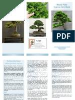 hinoki_cypress (1).pdf