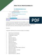 Programa Practicas Profesionales 2014