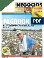 AgroNegocios 63.pdf