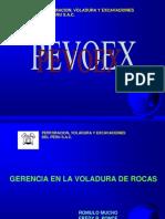 Pevoex Feature