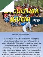 La Cultura Juvenil