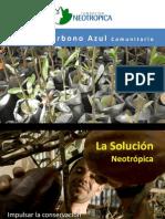 Carbono Azul.pdf