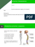 Anatomía y biomecánica de la columna vertebral