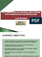 Controlling System Bloc 6 2011