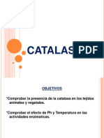 CATALASA IDEAS POSITIVAS.pptx