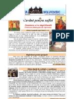 266. D6R Vindecarea Slabanogului Din Capernaum