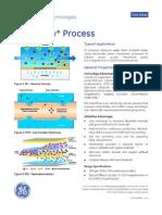 GE DeltaFlow Process - FS1114EN