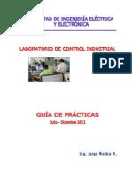 Guía de Prácticas CI 2013-B