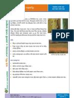 Factsheet13 - Sada Gasforing