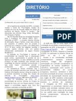 O Diretório - Edição 5 - Julho 2013