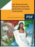 Guia Consejo Tecnico 2013-2014