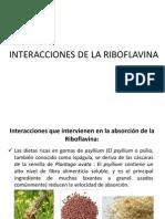 Interacciones y Excresion de La Riboflavina