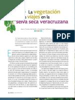 selva seca veracruzana.pdf