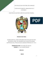 Tesis Tesoreria IV 2013