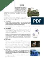Torno 1 Tipos y Estructura 2011 2
