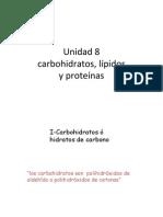 unidad_8-carbohidratos-lipidos-proteinas.pdf