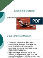 Patologia Sistema Muscularpower