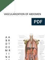 Vascularization of Abdomen