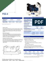 (ES) P22-4
