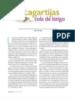 Lagartijas cola de látigo.pdf