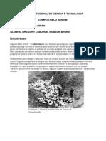 relativismo&UTILITARISMO_POR GREGORY LABORDE E CO.